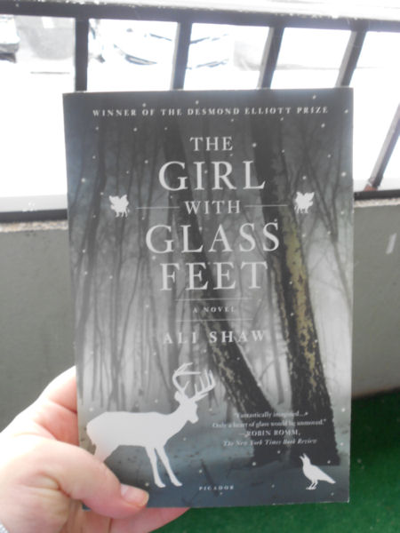 Bought this at Kramerbooks & Afterwords Cafe. As you can see from the cover, the setting of the book is somewhere snowy!